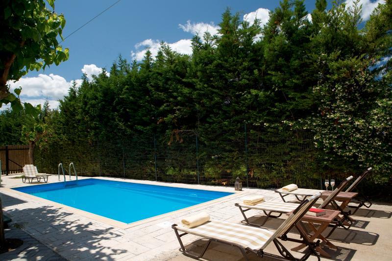 Anthemis Luxury Villas - Villa Vassiliki with private pool, private & BBQ., alquiler vacacional en Agia Varvara