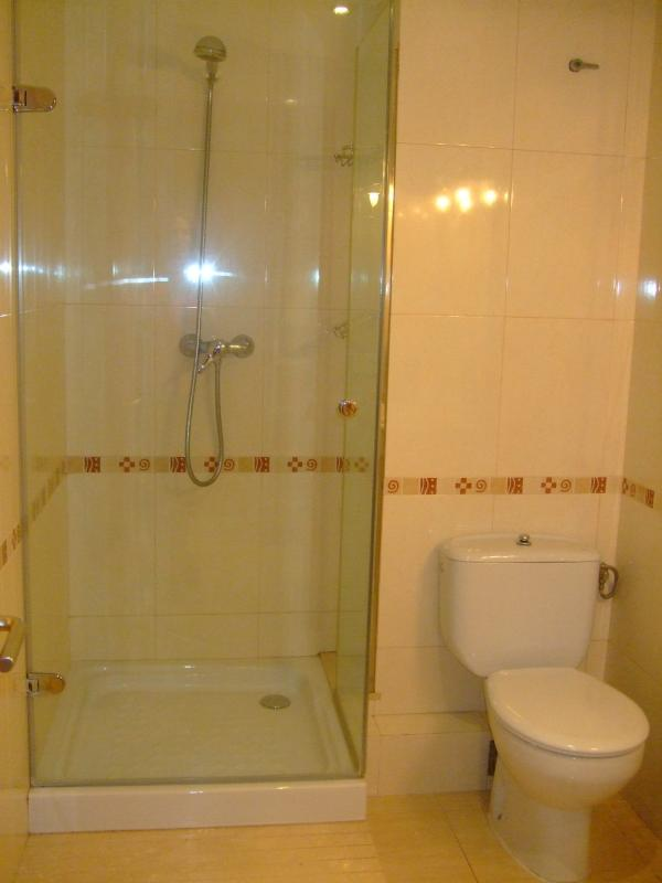 baño con ducha y mampara, papel higiénico, gel y toallas