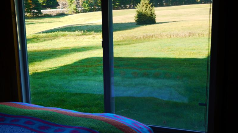 View of meadow from king-size bed in master bedroom