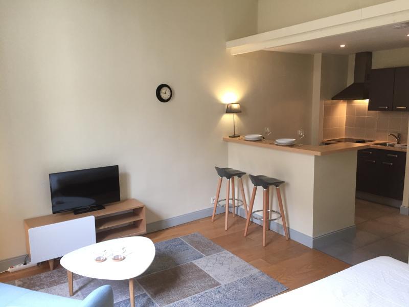 location appart Avignon Bel appartement