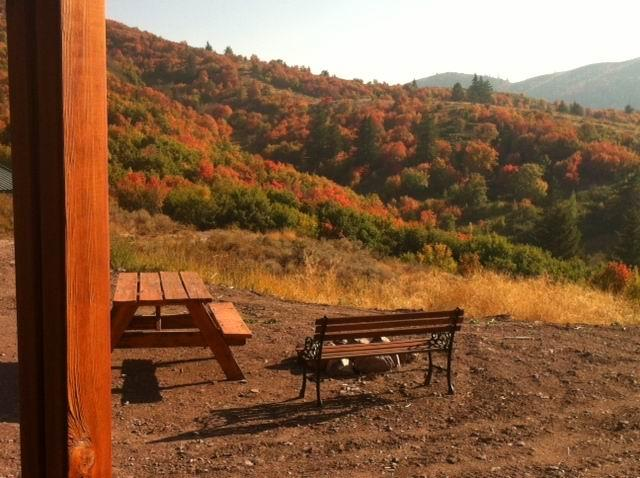 Fall view from Yurt front porch.