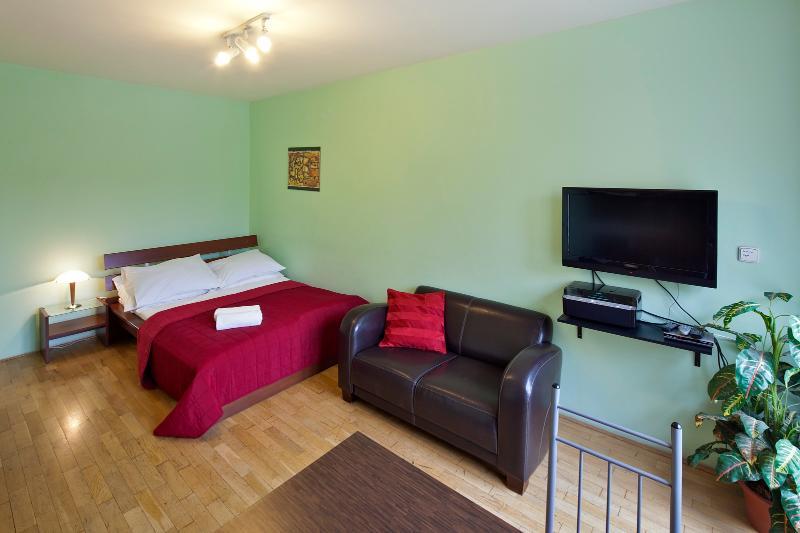 Studio Capital Apartment, vacation rental in Prague