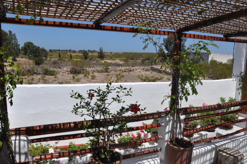 Belle maison berbère près d'Essaouira, aluguéis de temporada em Sidi Kaouki