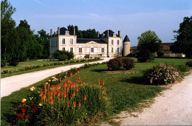 Château in the vineyards of Bordeaux, vacation rental in Saint-Loubes