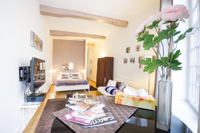 Noella Suite Vieux Lille RUE DE LA MONNAIE, location de vacances à Lille