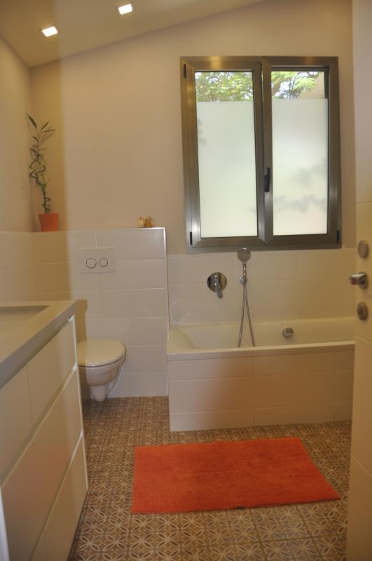 Main bathroom - shower & bathtub