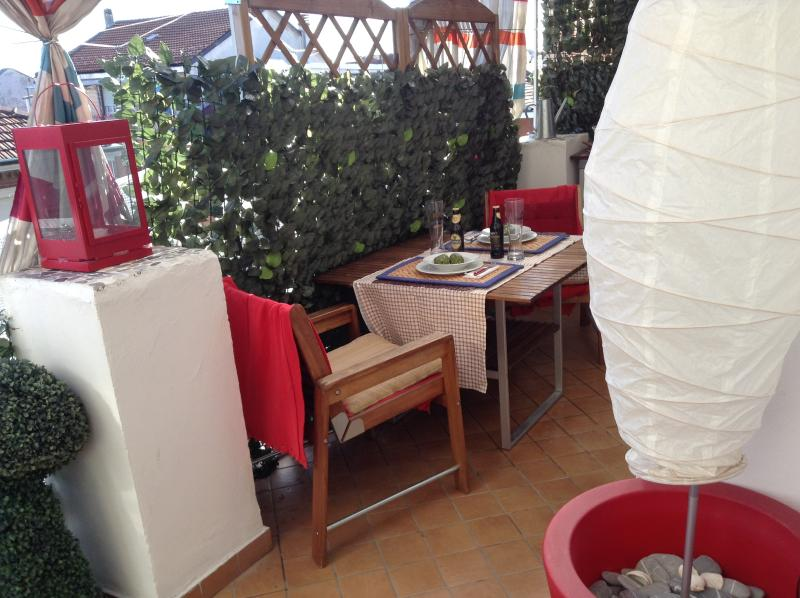 Attico Terrazzo appartamento Wi-fi Bus 33 fermata (Capriolo), alquiler de vacaciones en Rivoli