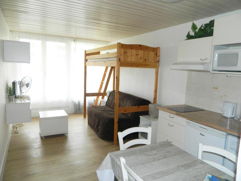 location appartement Annecy studio+balcon centre