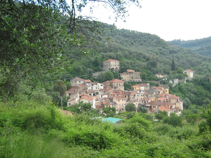 View of Moltedo