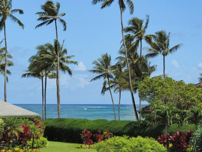 View from deck of world famous Hanalei Point Break!