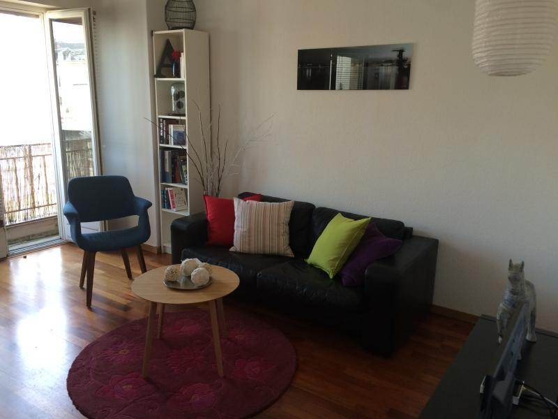 Geneva attractive central apartment, holiday rental in Veyrier