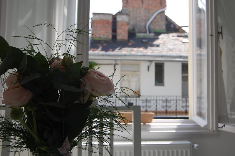 sunny top floor suite  , two rooms  ,  free wifi , next Danube  river , AC, casa vacanza a Leanyfalu
