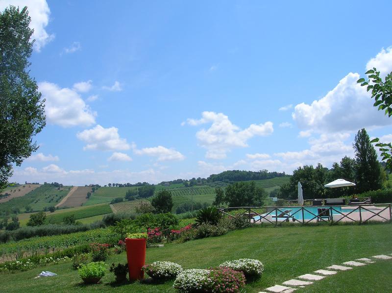 the garden & the pool