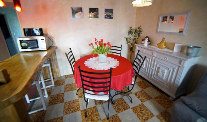 GITE MEUBLE DE TOURISME 3 * SELLES S/ CHER, vacation rental in Chatillon-sur-Cher