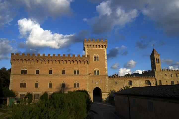 Bolgheri under the tuscan dream, vacation rental in Castagneto Carducci
