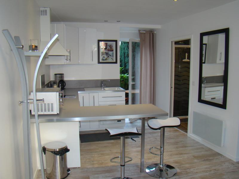 Appart studio hyper centre RDC avec cour privative, location de vacances à Angers