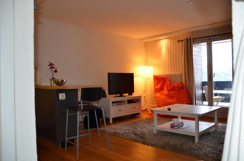 Studio 2 personnes / 35 m2 - centre de la station, holiday rental in Nendaz