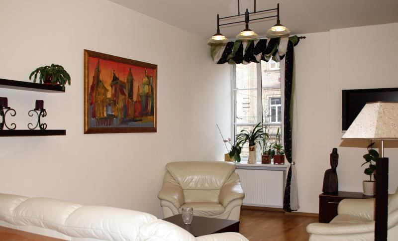 Cozy, fully stocked apartment in the heart of Viln, vacation rental in Vilnius