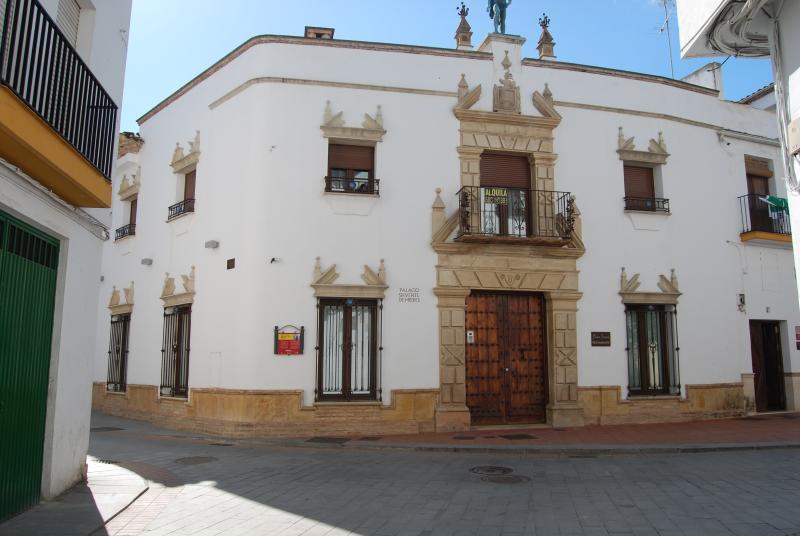PALACIO SIRVENTE DE MIERES, vacation rental in Andujar