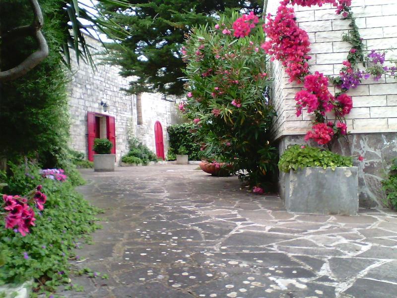 Valle d'Itria 1 -  casa vacanza, vacation rental in Locorotondo