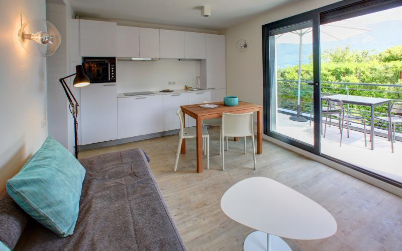 Appartement de charme au bord de l'eau vue lac, location de vacances à Sevrier