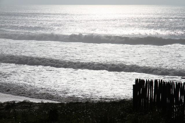 Appartement front de mer vue directe Océan, vacation rental in Lacanau-Ocean