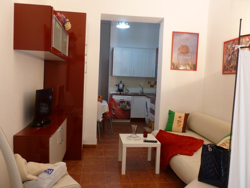 MADRID MUSEOS DE 4 A 7 + WIFI, vacation rental in Madrid