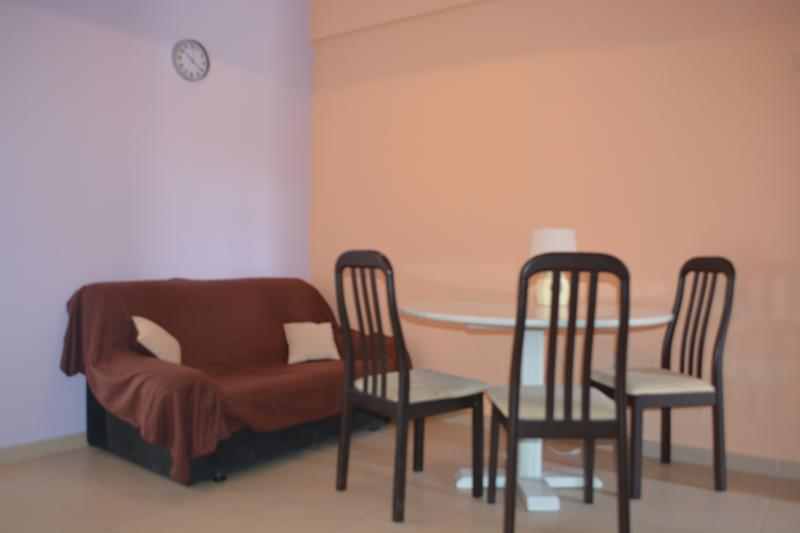 Seaside view appartment, vacation rental in Parekklisia
