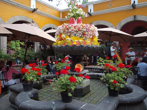 Estudio en corazón de San Ángel en Ciudad Mexico, vacation rental in Mexico City