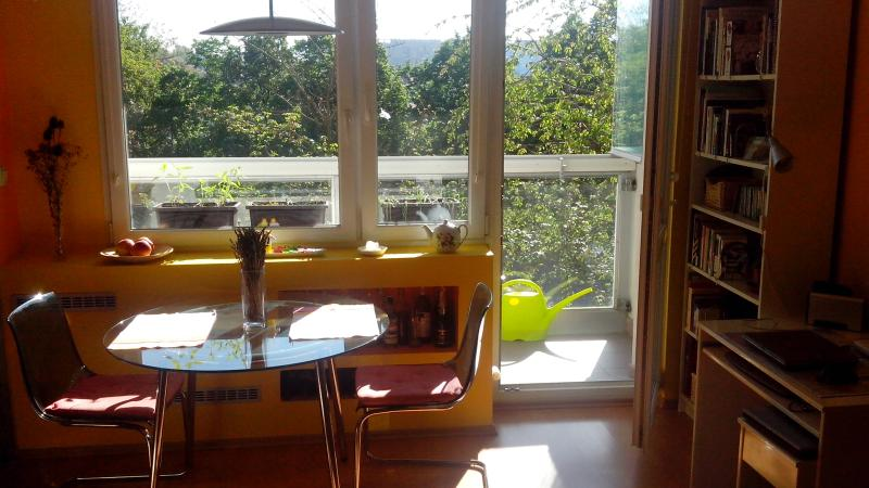 Bright one bedroom flat, holiday rental in Roztoky