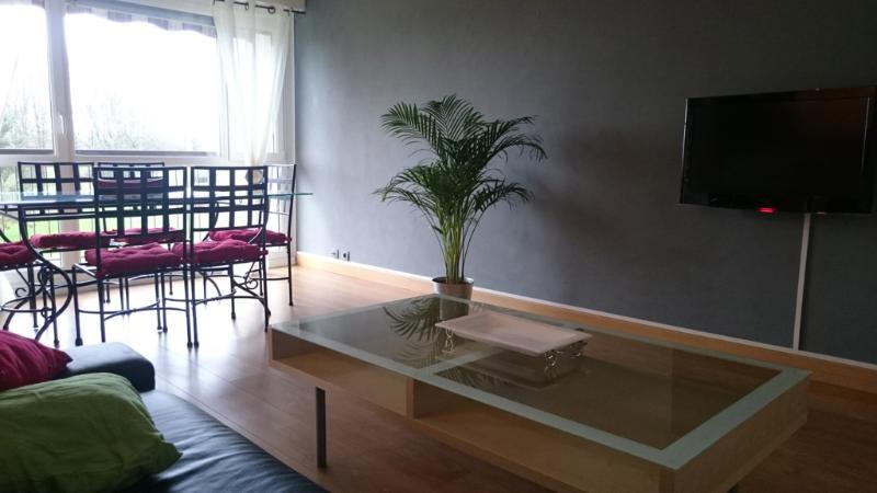 Large apartment near Nantes