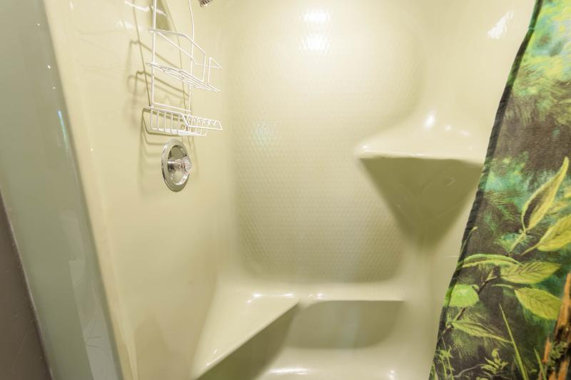 Second Bathroom downstairs - shower