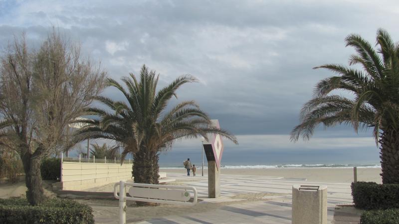 Canet en Rousillon: T2  100 mètres plage – semesterbostad i Canet-en-Roussillon