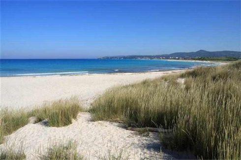 spiagge bianche a breve distanza
