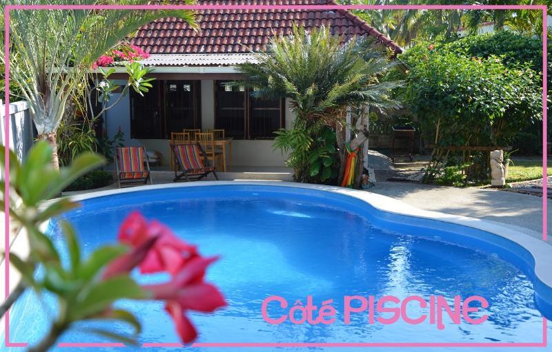 piscine privée de 8 m avec jaccuzi traitée aux sels