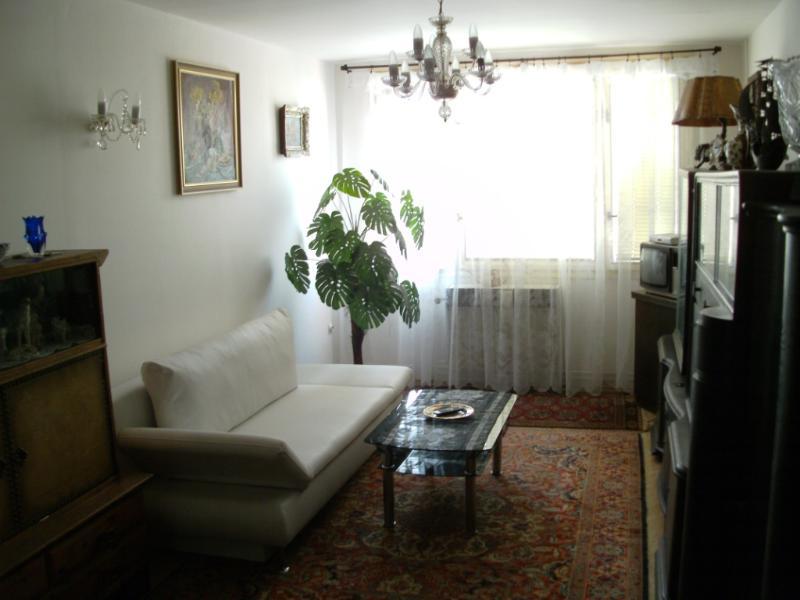 Apartment ONDRA, holiday rental in Velke Popovice