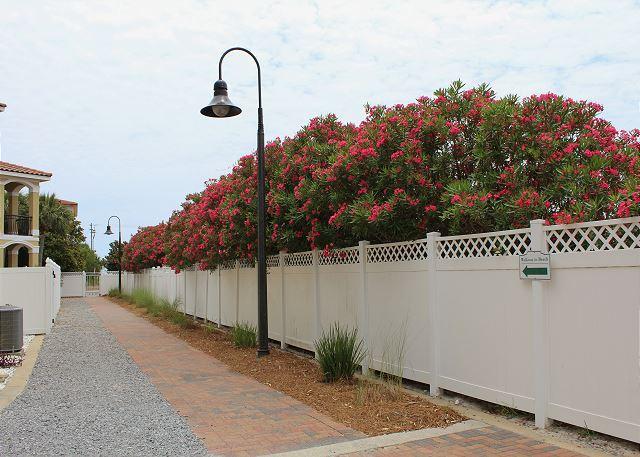 Neighborhood Walkway to the Beach