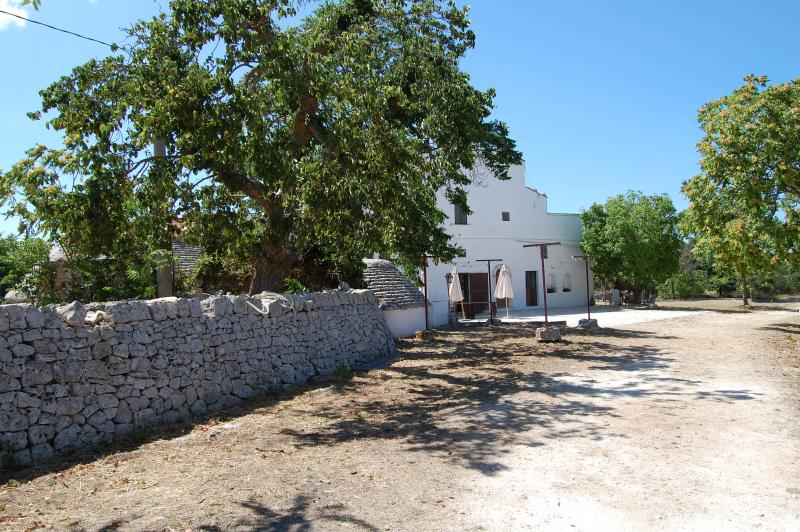 Masseria Santanna, holiday rental in Monopoli
