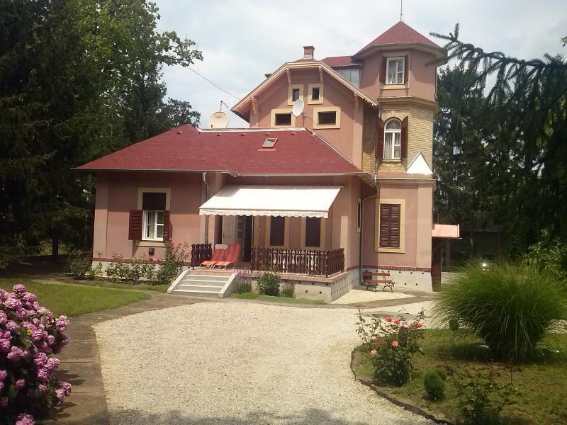 Gabi villa, holiday rental in Balatonfoldvar