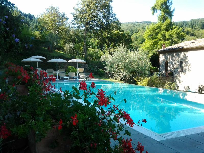 Quercia, holiday rental in Montegonzi