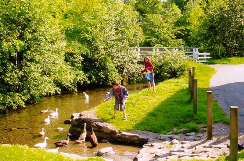 Children feeding the ducks by the stream opposite the cottage