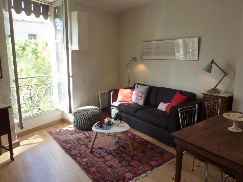 un salon lumineux, meublé de meubles de famille ou chinés lors de nos voyages.