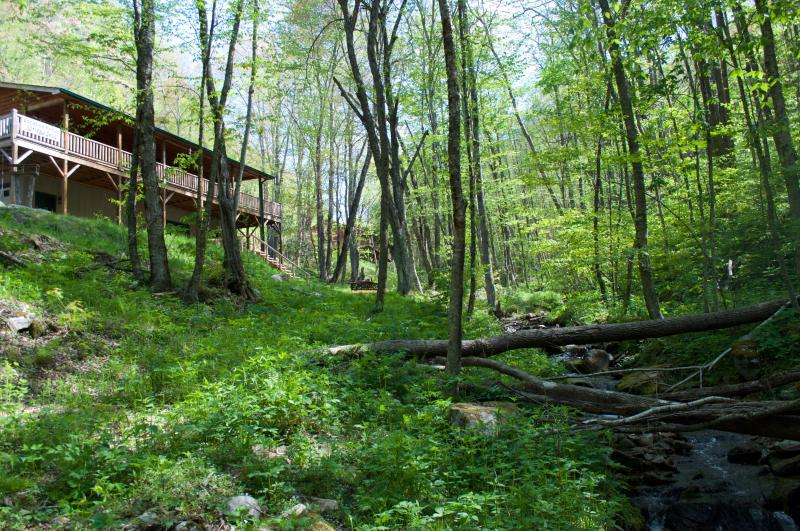 Mountain Creek Cabin sits on 1.6 acres with creeks, waterfall, trees, and views. Everything you need