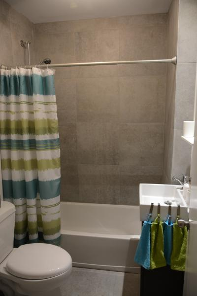 Back bathroom. Bath tub-shower combo