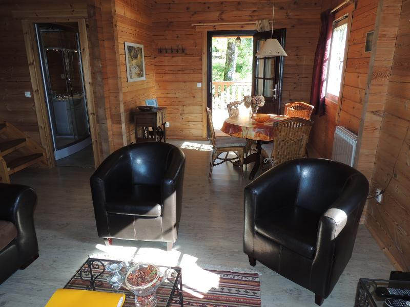 livingroom with tv ( dvd player ), electric stove, dining table with four chairs