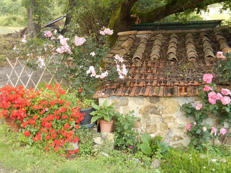 giardino attiguo alla casa