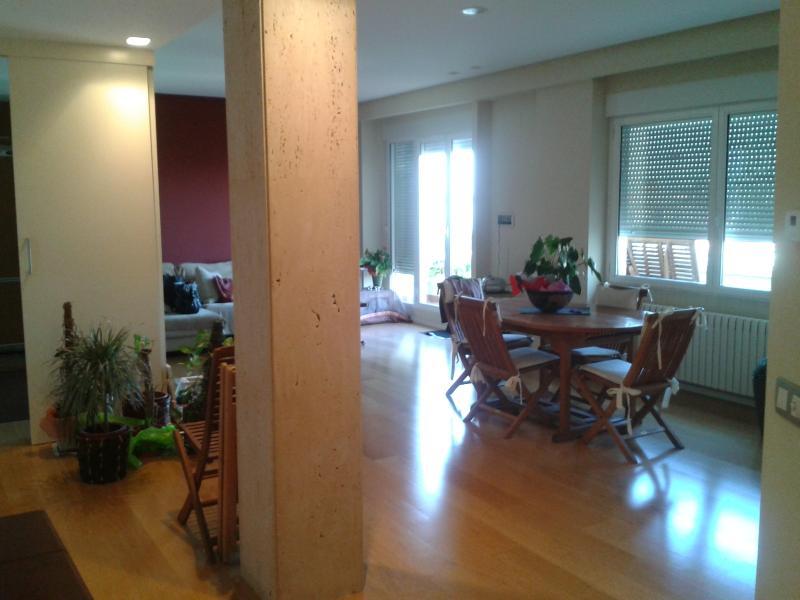 ATICO CON VISTAS, holiday rental in Zaragoza
