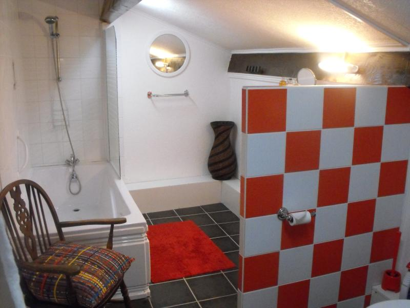 Beautiful Stylish Gite in Lot Region, SW France, holiday rental in Touzac