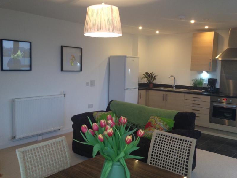 Open plan living-room kitchen