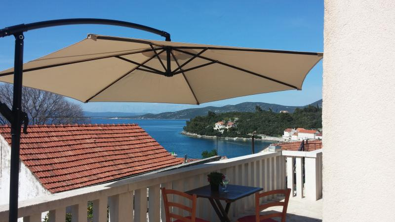 Hause Zrno, holiday rental in Racisce